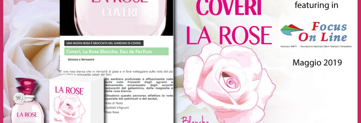 LA-ROSE-BLANCHE-FOCUS-ON-LINE